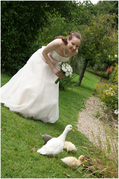 Essex Wedding Photographer - feeding the ducks